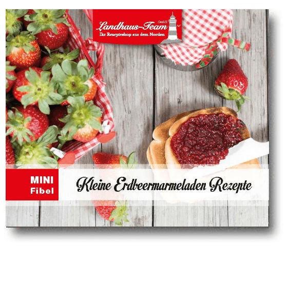 Mängelexemplar - Mini-Fibel Erdbeermarmeladen Rezepte